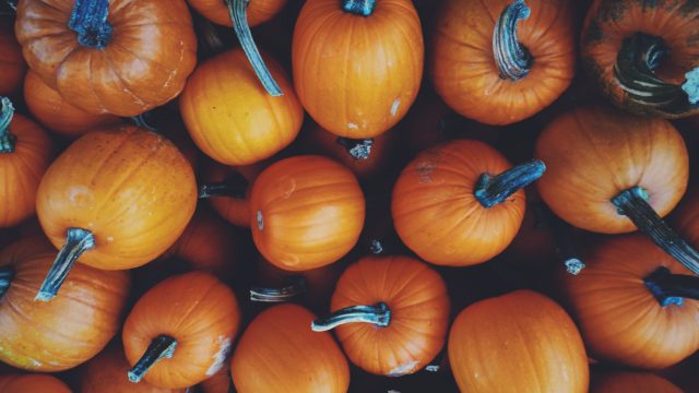 """Teaching Halloween in Indonesia: A """"Spook-tacular"""" Way to Encourage Cultural Exchange"""
