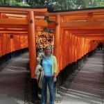 Kyoto Travel: 6 Attractions That Will Make You Fall in Love